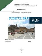 214307723-Judetul-Brasov.doc