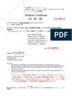 英文診断書 紹介状 意見書セット:診断書サンプル