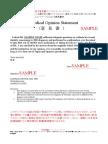 英文診断書 紹介状 意見書セット :意見書サンプル