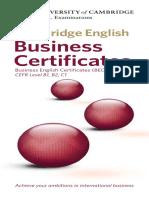 21995-bec-business-certificates-leaflet.pdf