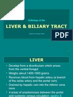 Liver Biltract 2009 Edit