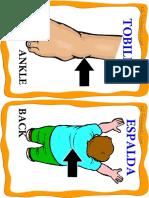 Body Parts 2 (Medium).pdf