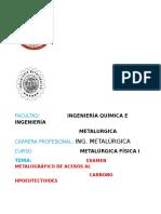 Informe Metafisica i Examen Metalografico