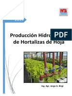 Hidroponica de Hortalizas