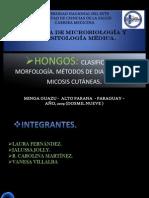 HONGOS. clasificacion. morfología. micosis cutánea.