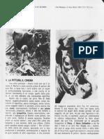 Warhol Cow