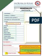 OTROS MINERALES.docx