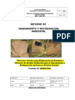 Informe Mayo - Junio 2015 (Ambiente)...