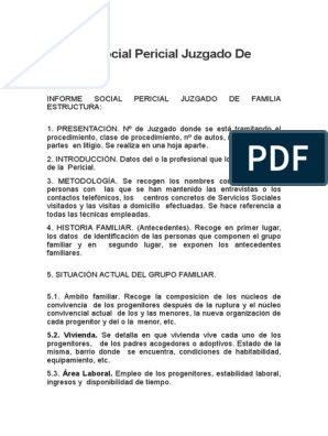Informe Social Pericial Juzgado De Familia Trabajo Social