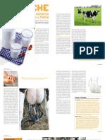 Leche de Vaca, Un Alimento Seguro y Fiable