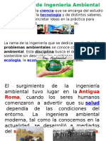 (I)Fundamentos de La Ingeniería Ambiental (1)
