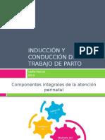 induccinyconduccindeltrabajodeparto-120409010109-phpapp01.pptx
