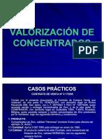 48768865-COMERCIALIZACION-DE-CONCENTRADOS.pdf