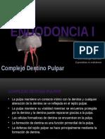 Complejo Dentino Pulpar 1