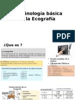 Terminología Básica de La Ecografía