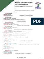 Análisis-Terminológico - Dra. Gea Unica 2014