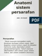 Sri Astuti Anatomi Persarafan Lngkp