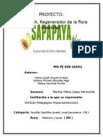 SAPAPAYA; Regenerador de La Flora Intestinal