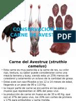 Conservación de Carne de Avestruz