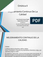 C1. Criterios de Calidad en El Proceso de Confeccion de Ortesis 1 1 1 1