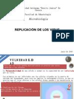 Replicacion De LosVirus