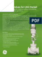 Antisurge Valves for LNG Market
