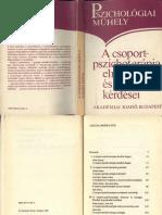 Psz műhely 3. A csoport pszichoterápia elméleti és gyakorlati kérddései