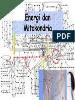 Energi dan Mitokondria.pdf