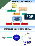 Aula 10 - Cinética Dos Processos Fermentativos (2015)