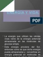 Clase 5 Energia y Vida