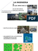 SUCESION ECOLOGICA.ppt