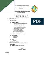 calicata informe 1