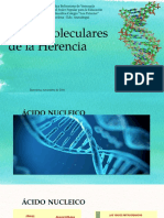 Bases Moleculares - Presentación