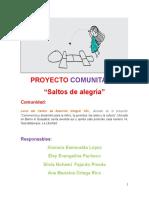 Matriz de Proyecto Comunitario.