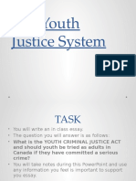 the youth justice system