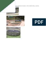 Wonga Humedales de Aguas Residuales de La Planta