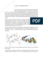 Hidroliza+ADN