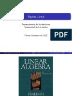 ALGEBRA LIN-CAP1.pdf