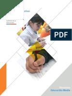 Programa Docente Media 2016(2)