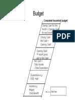 budget graphic organiser
