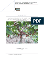 Plan de Negocio de Cacao MDD - AGROIDEAS