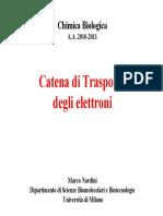 Catena Trasporto Elettroni
