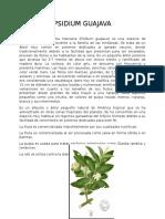 Plantas Medicinales Comunes con nombre Cientifico Ilustrada