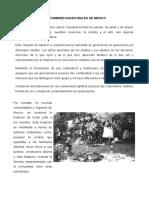 Costumbres Ancestrales de Mexico