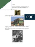 Proceso de Extraccion Del Algodón