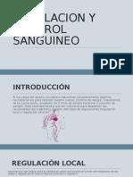 Regulacion y Control Sanguineo