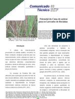 Potencial da Cana-de-açúcar para os Lavrados de Roraima