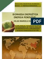 BIOMASSA ENERGÉTICA E ENERGIA RENOVÁVEL