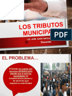 Clase 11 Tributos Municipales