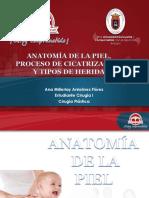 Anatomia de La Piel Cicatrizacion y Heridas(1)
